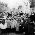 di Maria Cristina Serra Sono sempre gli occhi dei bambini ad arrivare dritti ai cuori, a smascherare la miseria e l'orrore che la nullità della ragione genera. Quando ci assale […]