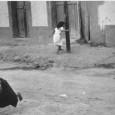 NUOVA RUBRICA DI SABRINA GRECO: SULLA STRADA. Si fa ancora più indietro, si fa ancora più tardi. E' appena dietro me, sento i vestiti maleodoranti di urina. Forse mi sta […]